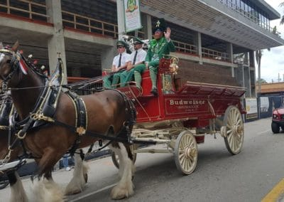 clydesdales truck